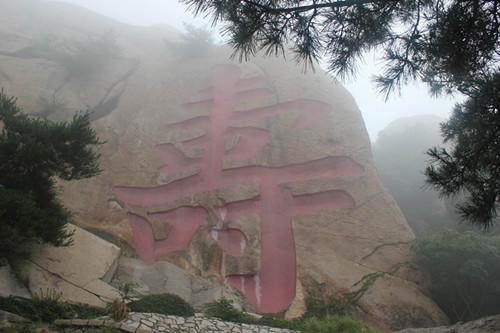 崂山奇石 - 青岛崂山风景区(天上人间 海上崂山)